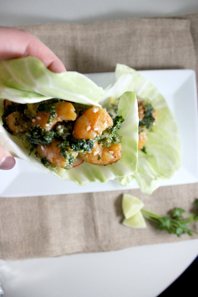cabbage wrap with mango quinoa asian shrimp cilantro pesto 2
