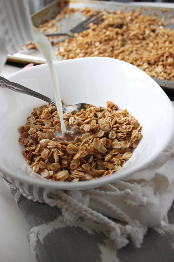 Ingredient Granola with Coconut, Maple Syrup, Honey and Cinnamon ...